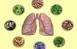 Tìm hiểu về các loại thực phẩm chức năng cho phổi