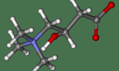 L-Carnitine fumarate - Chất chống oxy hóa